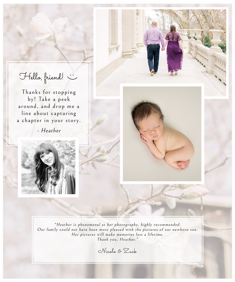 heather siverd photography | baltimore maryland photographer