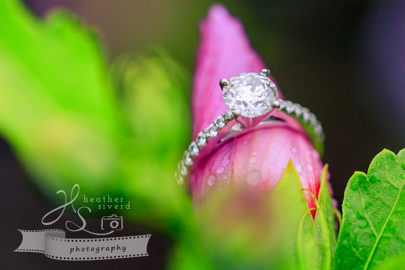 Meadowlark Botanical Gardens Engagement Photos-14