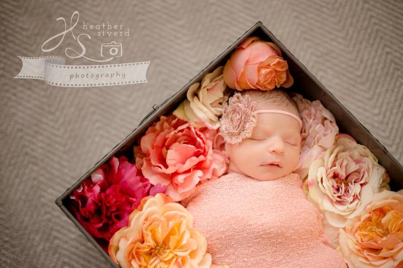 Baby Emma Rose-6