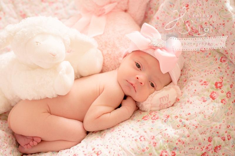 Baby Emma Rose-3